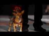 Крошка из Беверли-Хиллз 2 (Реклама)
